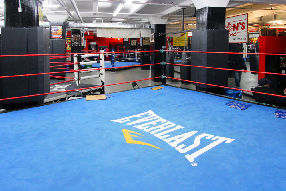 Rich results on Google image when searching for 'Boxing rings in gyms'